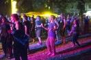 Schön am Neckar- Festival 2017_15
