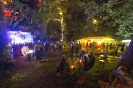 Schön am Neckar- Festival 2017_8